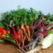 Oferty sezonowej pracy w Niemczech przy zbiorach owoców i warzyw 2014
