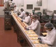 produkcja-kanapek-niemcy